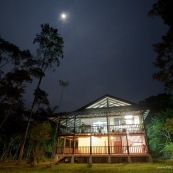 Estacion Cientifica Yasuni : Noche