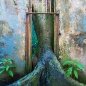 Ile Saint Joseph : bagne - Guyane