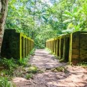 Bagne des Annamites - Montsinéry - Guyane