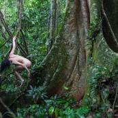Nu artistique tropical - Amazonie - Guyane
