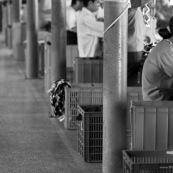 """Usine chinoise de fabrication de chaussures. Ouvrieres a la chaine, couturieres sur machines a coudre. Chine, Shenzhen, usine du monde. Travail plus de 70 heures par semaine, a faible couts, pour utilisation des produits par les pays """"riches"""". Prison."""