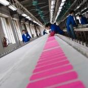 """Usine chinoise de fabrication de chaussures et autres produits (protections, sacs...). Ouvriers a la chaine, en train de realiser des serigraphies. Chine, Shenzhen, usine du monde. Travail plus de 70 heures par semaine, a faible couts, pour utilisation des produits par les pays """"riches"""". Coloration de tissus en rose."""
