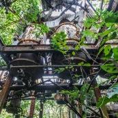 Ancienne rhumerie a Matoury, Guyane francaise.  Les cuves sont en l'air. La vegetation reprend ses doits.