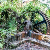 Ancienne rhumerie a Matoury, Guyane francaise.  Engrenages. La vegetation reprend ses doits.