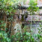 Ancienne rhumerie a Matoury, Guyane francaise.  Batiment en briques. La vegetation reprend ses doits.