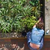 Anne-Laure et son jardin
