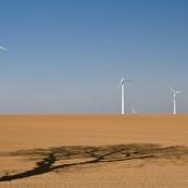 Champ d'éoliennes, avec ombre d'arbre en premier plan.