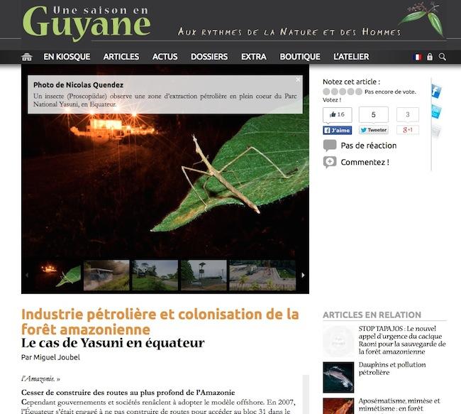 Article Une Saison en Guyane