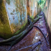 Ile Saint Joseph : bagne - Photographe Guyane - Iles du Salut