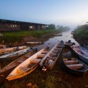 Marais de Kaw - Guyane