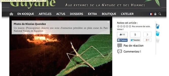 Une Saison en Guyane – Web